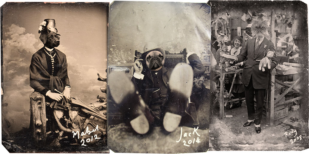 Dogs in period costumes